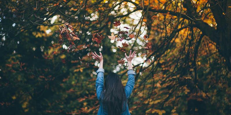 Cedrospeziato & l'autunno
